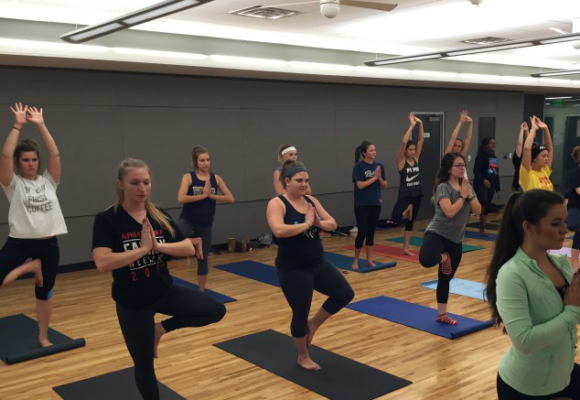 Introductory Course for Yoga Trainers